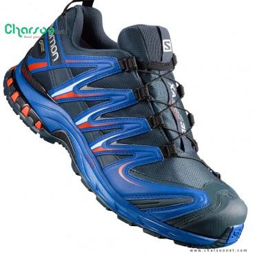 کفش سالامون ایکس ای پرو 2017 Salomon XA Pro 3D GTX