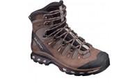 کفش کوهنوردی سالومون مردانه Salomon Quest 4D 2 GTX