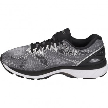 کفش رانینگ مردانه اسیکس Asics DynaFlyte 2