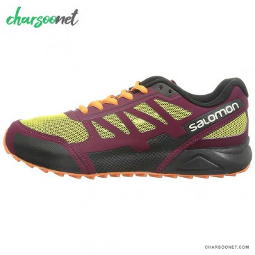 کفش پیاده روی زنانه سالومون Salomon City Cross Aero