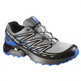 کفش سالامون Salomon Wings Flyte GTX