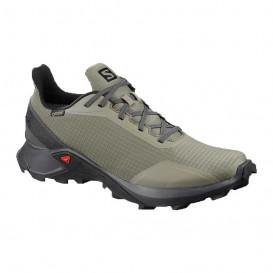 کفش تریال راننیگ مردانه سالومون Salomon Alphacross GTX