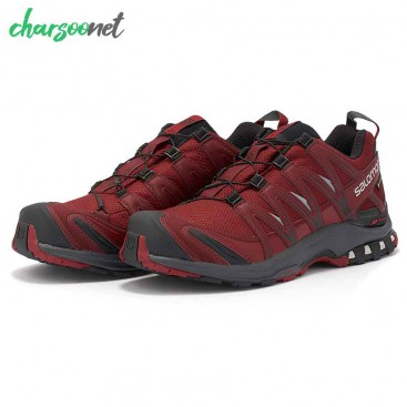 کفش مردانه ی سالومون Salomon Xa Pro 3D Gtx