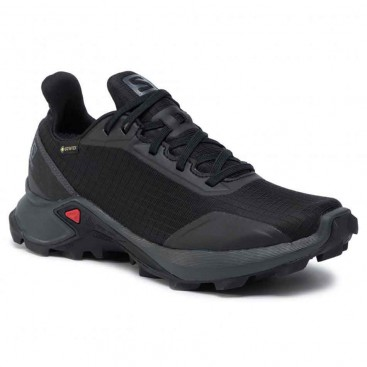 کفش رانینگ زنانه سالومون SA-408056 Salomon Alphacross GTX