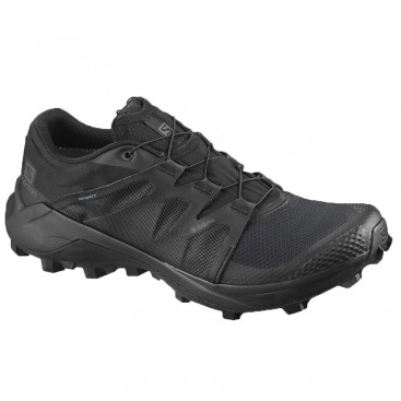 کفش ورزشی اسپرت سالومون مدل Salomon Wildcross GTX کد sa-410530
