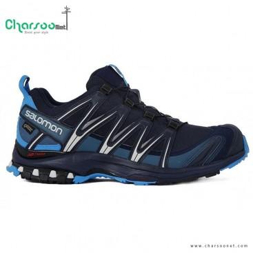 کفش کوهنوردی مردانه سالومون Salomon Xa Pro 3D GTX