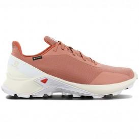 کفش تریل رانینگ سالومون مدل Salomon ALPHACROSS GTX کد 409611