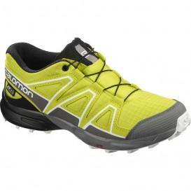کفش ورزشی سالومون مدل salomon speedcross cswp کد 409570